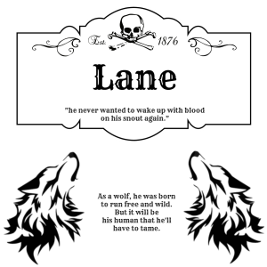 school-lane
