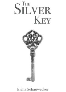 silver-key-cover