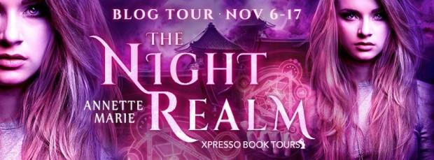 night realm banner.jpg